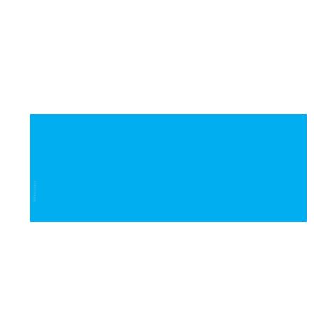 Mobvoi 出门问问